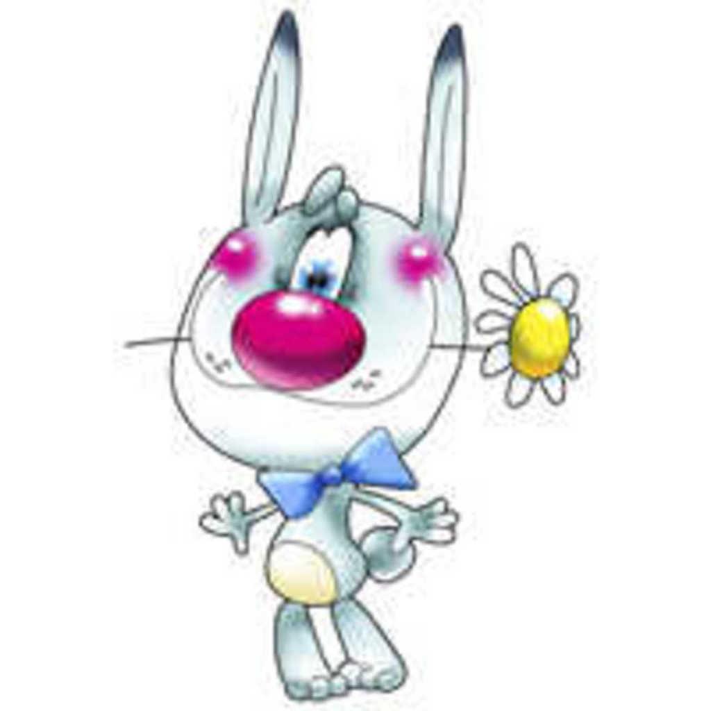 Заяц с цветком картинки 2